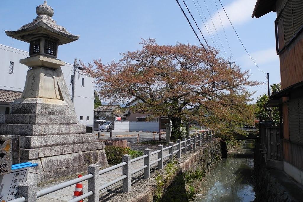 E0420_toyosato_08