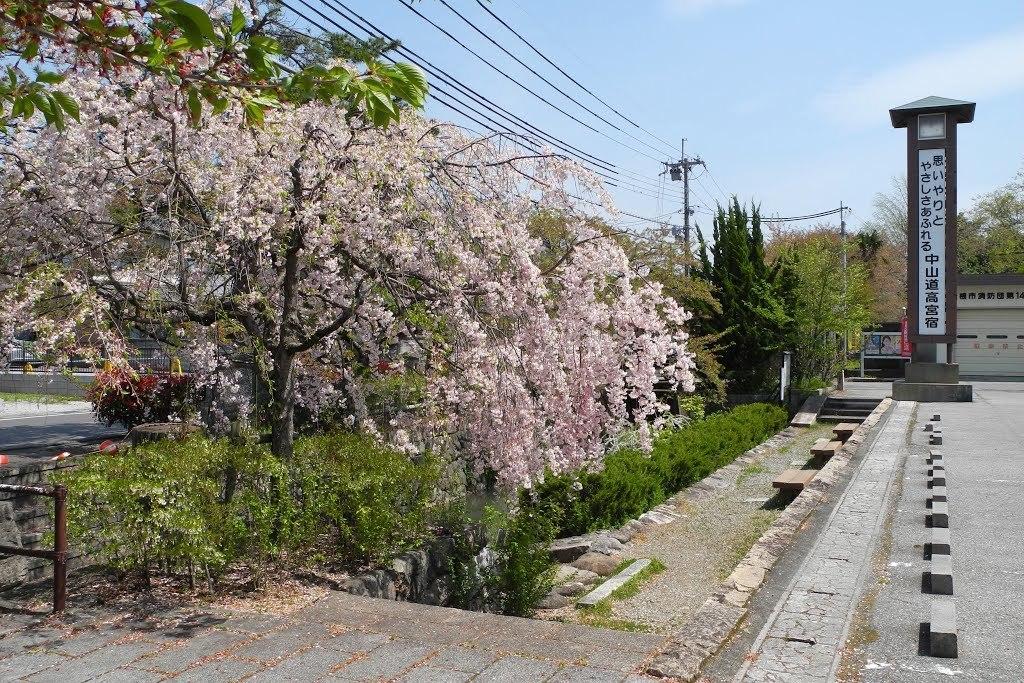 E0420_toyosato_09