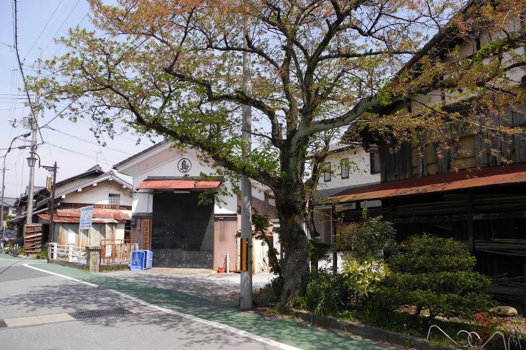 E0420_toyosato_21