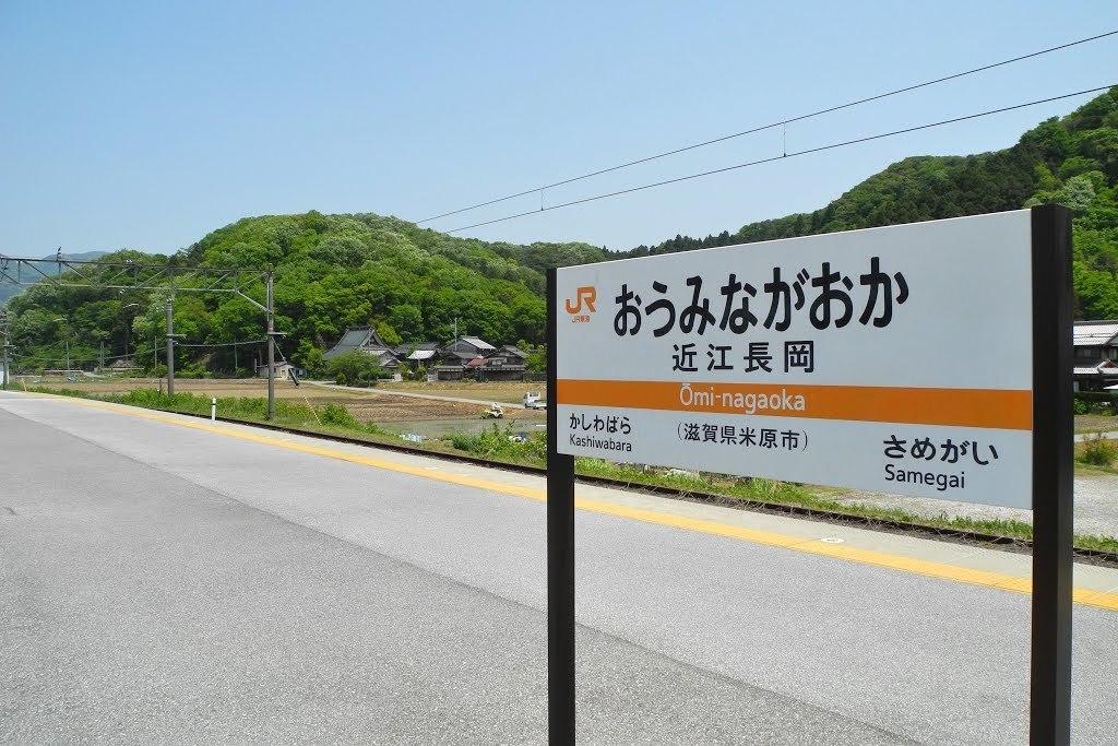 E513_nagaoka_02