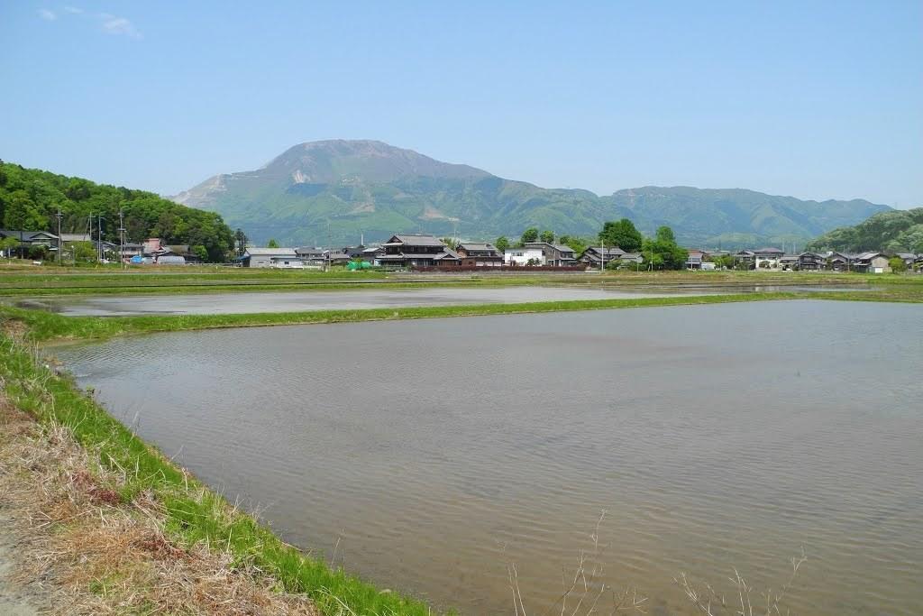 E513_nagaoka_12