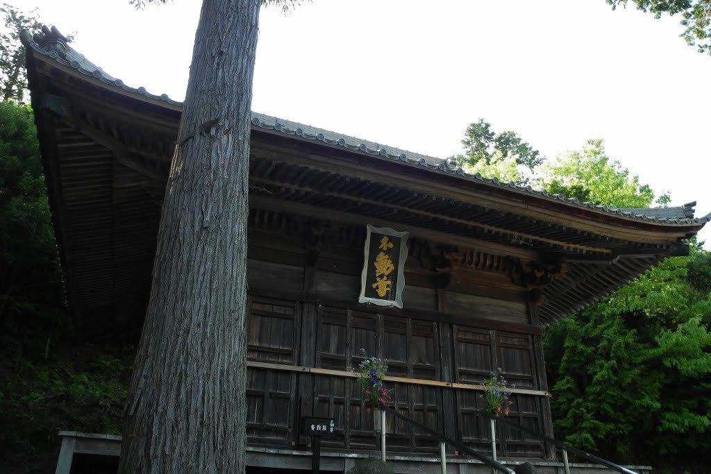 E513_nagaoka_45