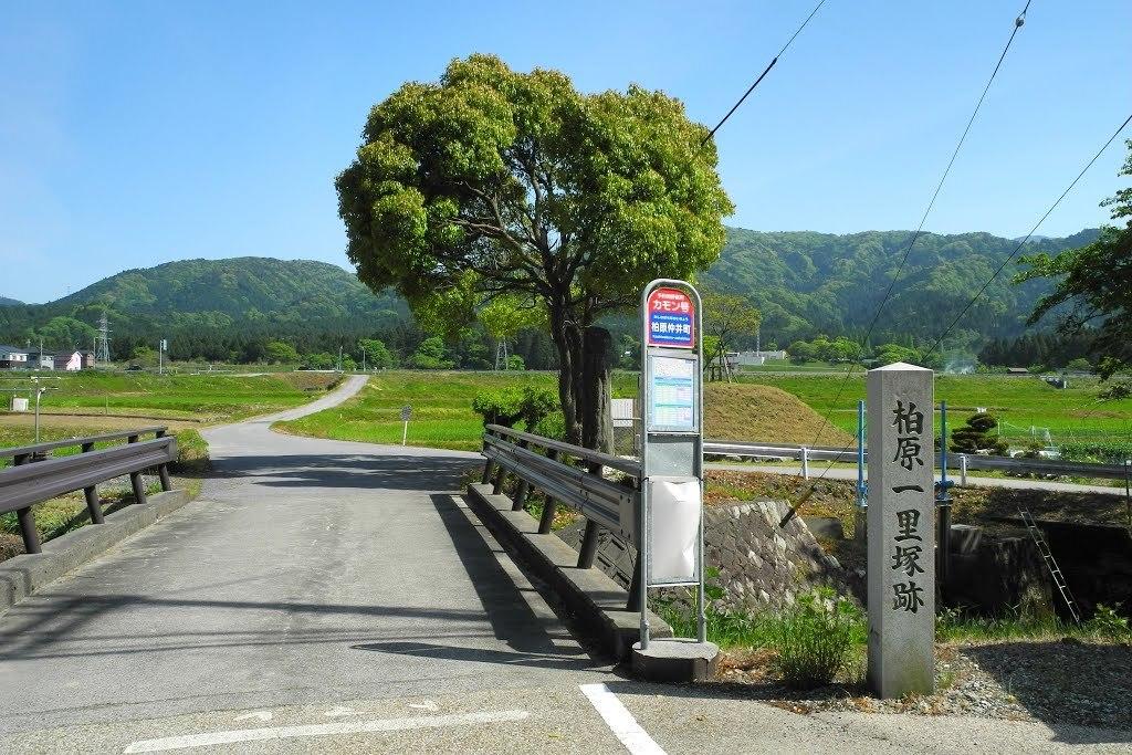 E525_kasiwa2_07