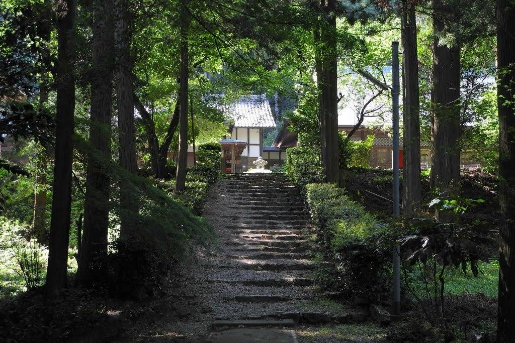 E525_kasiwa2_26