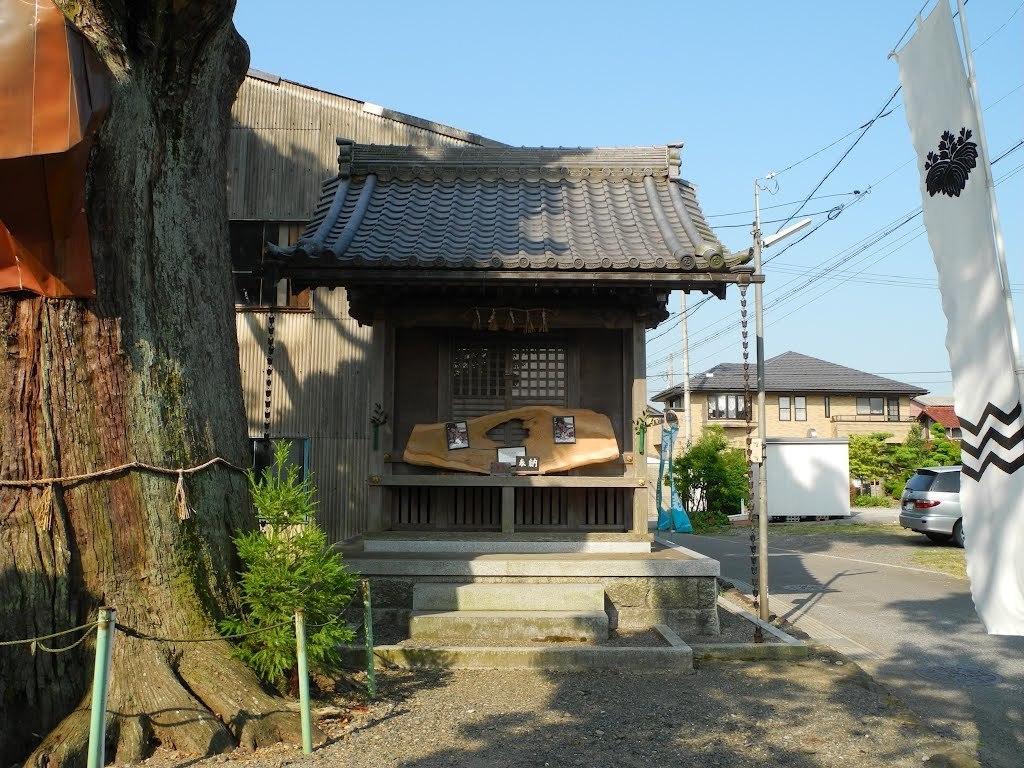 E528_sekisame1_12