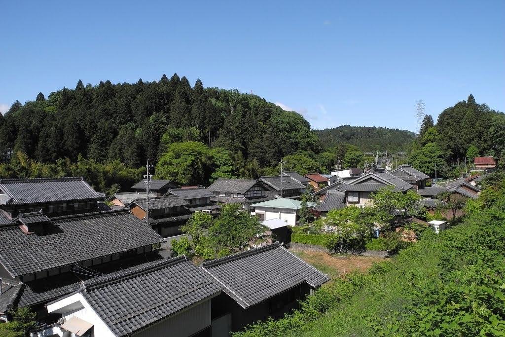 E528_sekisame1_25