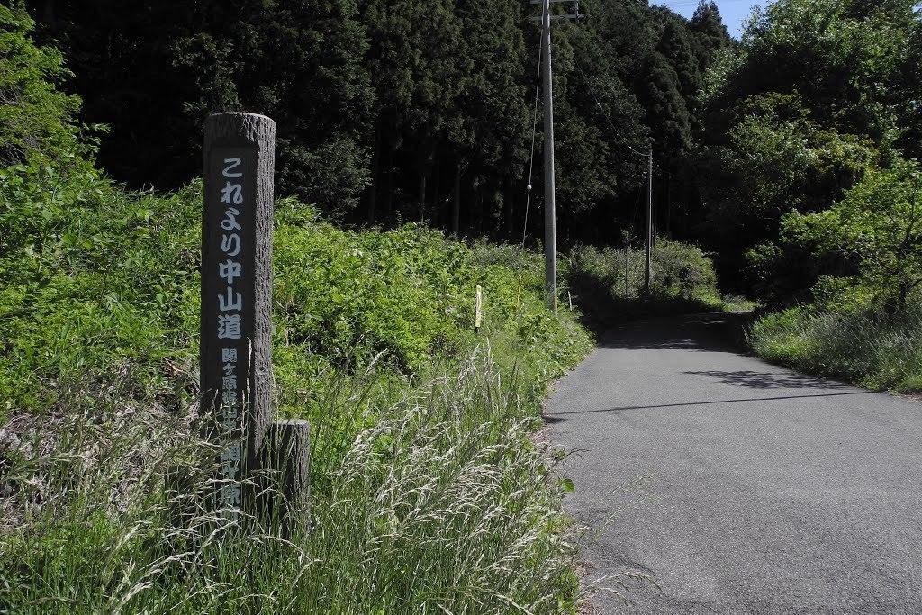 E528_sekisame1_36