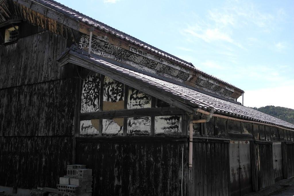 E528_sekisame2_09