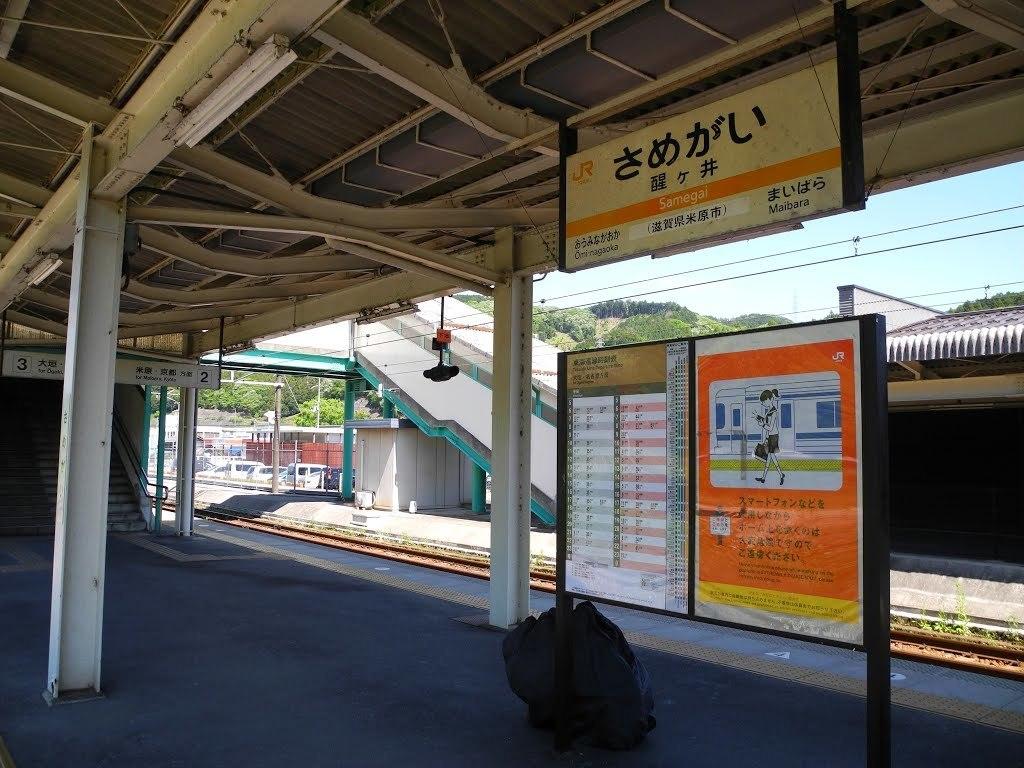 E528_sekisame2_54