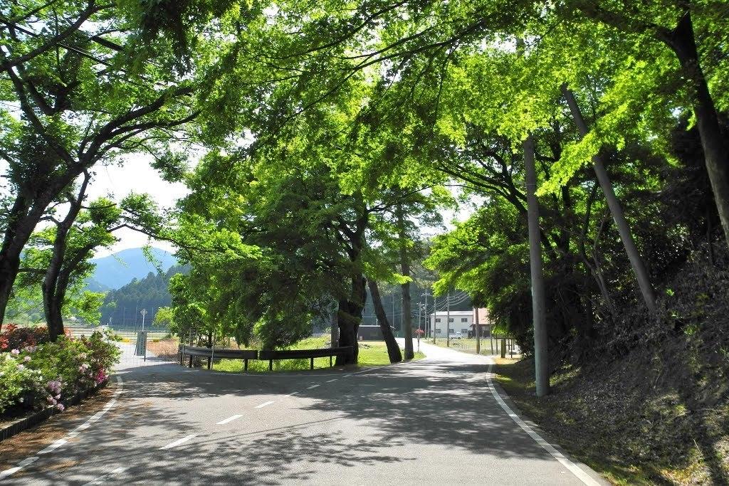 E611_kasiwabara1_03