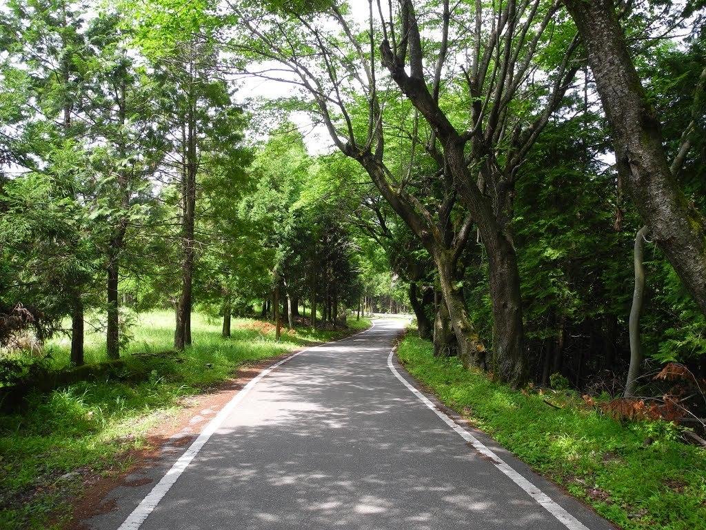 E611_kasiwabara1_35