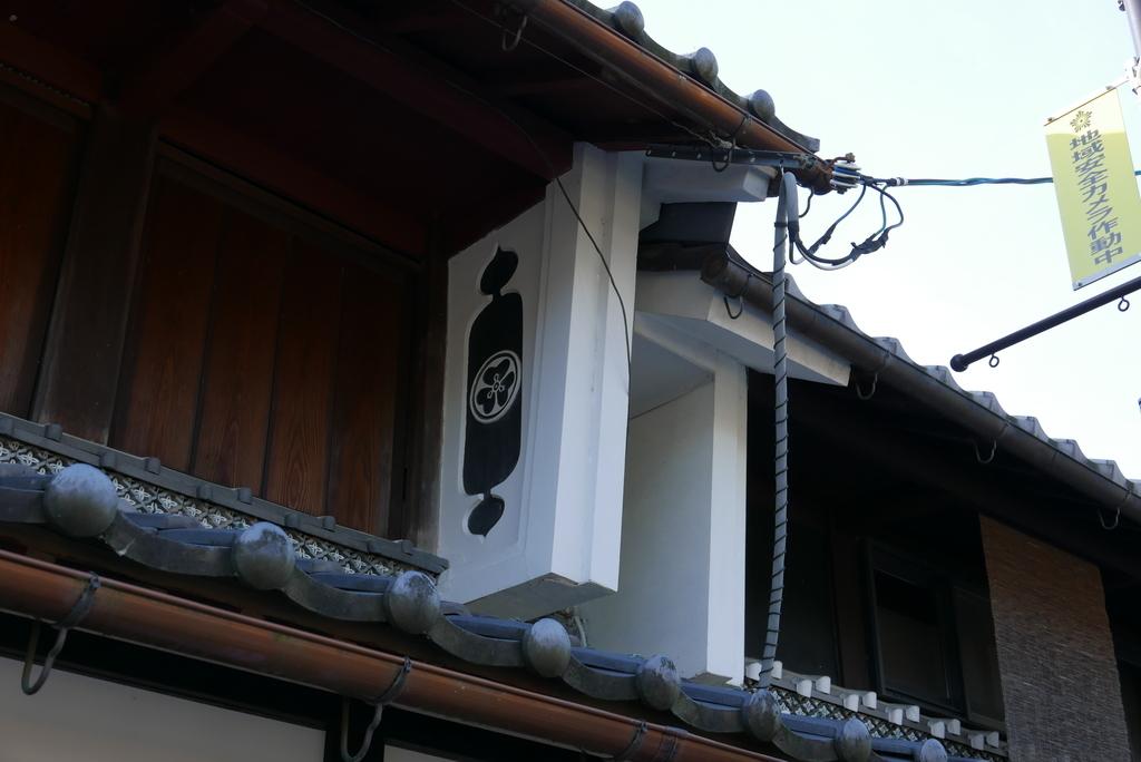 G1123_kimo_26
