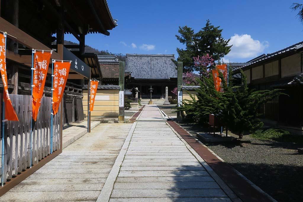 H0402_okubiwa_60