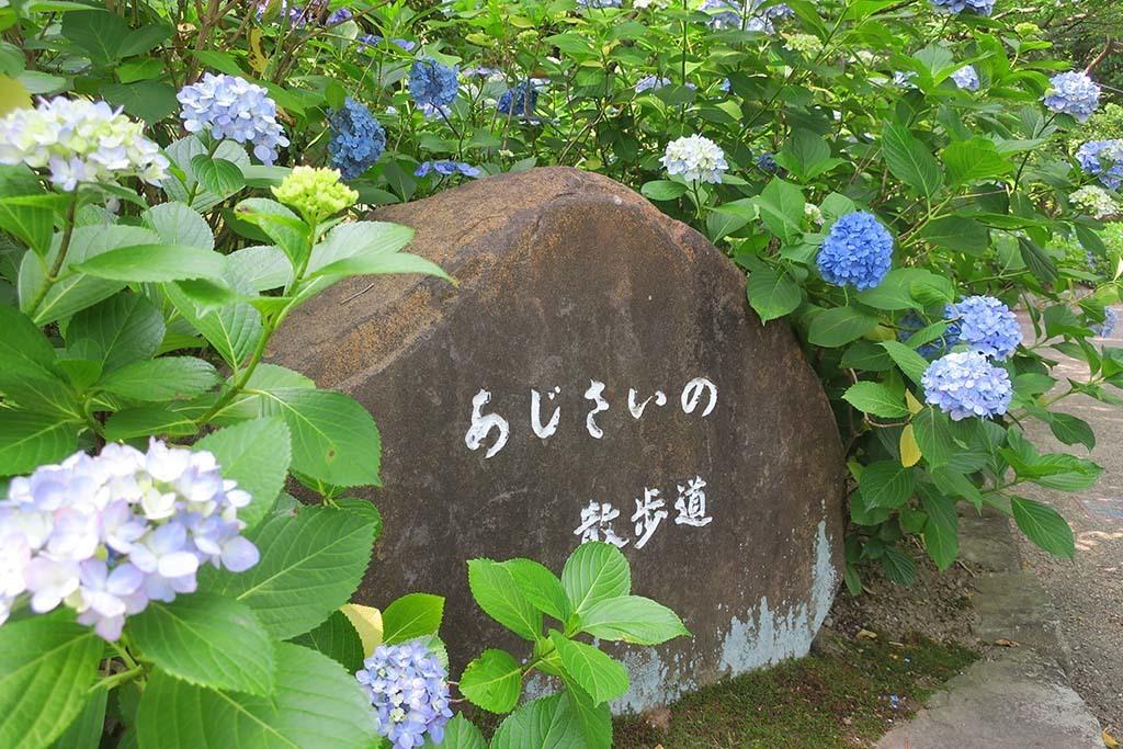 H0620_tsuru_08