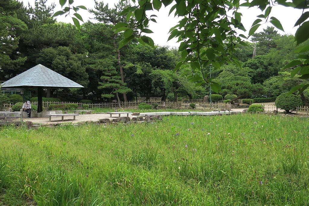 H0627_tsuru_24