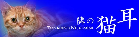tonarineko3